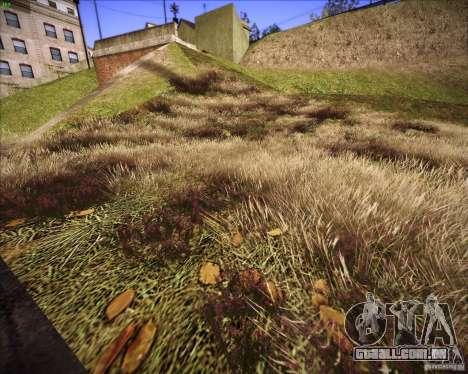 New grass para GTA San Andreas por diante tela