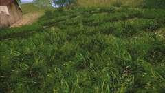 New grass para GTA San Andreas