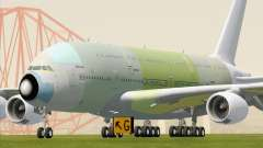 Airbus A380-800 F-WWDD Not Painted
