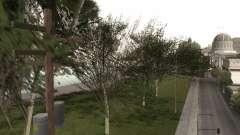 Uma cópia do original árvores