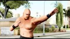 WWE Stone Cold 1