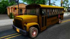 School Bus Driver Parallel Lines
